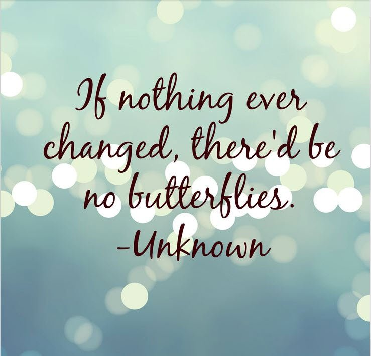 If nothing changed, there'd be no butterflies - Unknown Quote