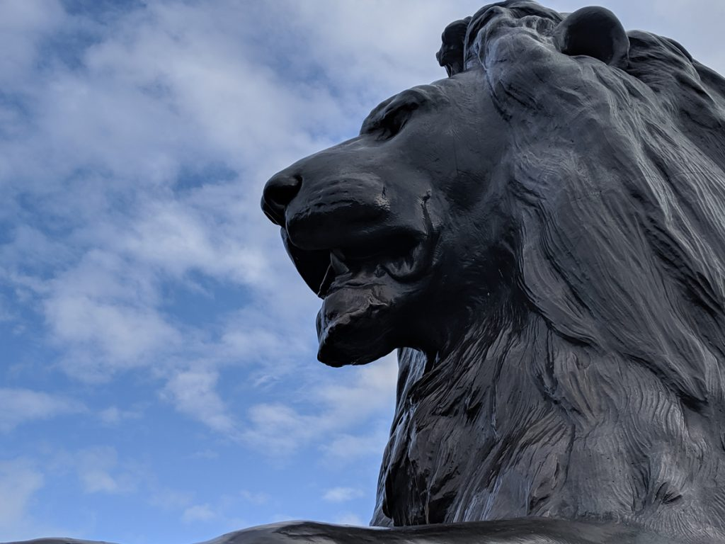 Lion Statue at Trafalgar Square in London